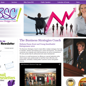 Web Design: The Business Strategies Coach