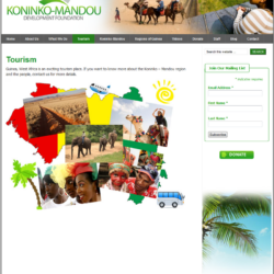 Non-Profit Web Design: Koninko-Mandou