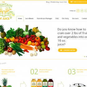 Web Design: The Fountain of Juice